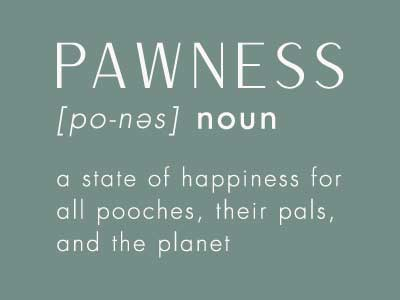 Image, Pawness Noun, A State Of Happiness For All Poochess- Pawness