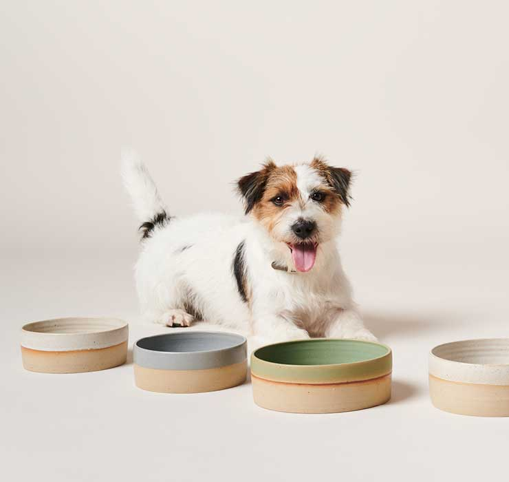 Image, Dog with Pawness Product Feeder Bowl