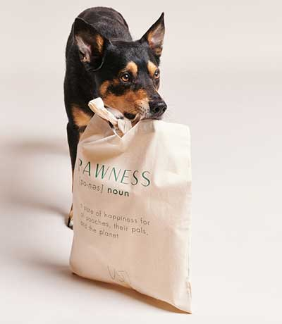 Image, Shop Pawness Dog With Shopping Bag - Pawness