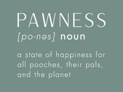 about Pawness