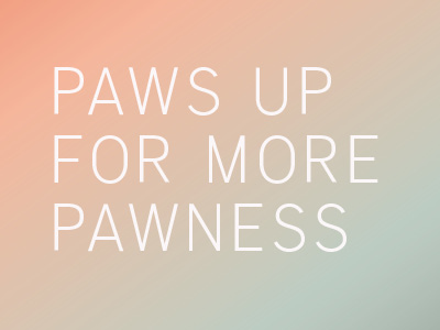 Pawness Charity