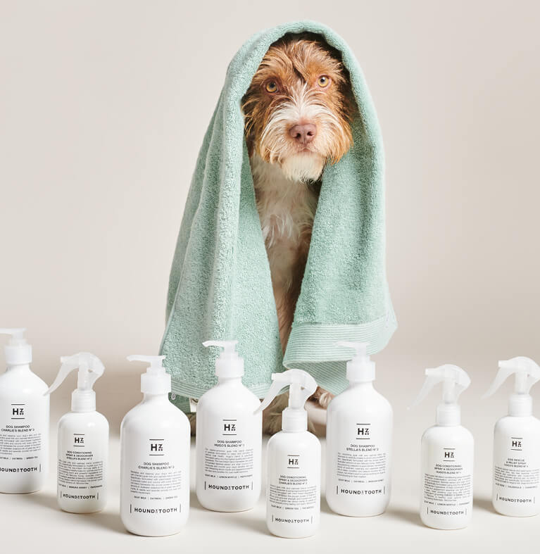Dog with Houndztooth grooming products