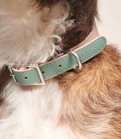 Close up Collar Bo Emerald